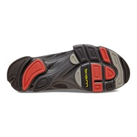 BIOM C - MEN'S + colour